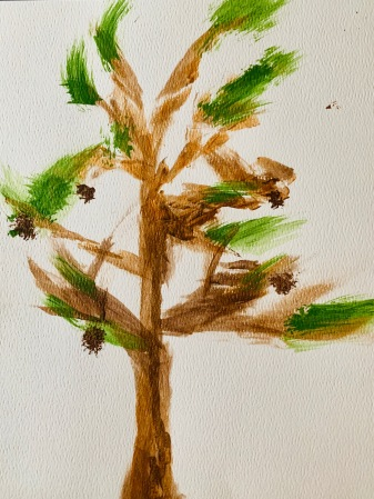 Nancy's Accidental Pine Tree